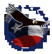 """Bienvenido a """"Seguridad y Protección Chile"""" - Servicios de seguridad y limpieza industrial"""